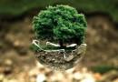 La Green Economy sempre più vicina alle nuove imprese italiane