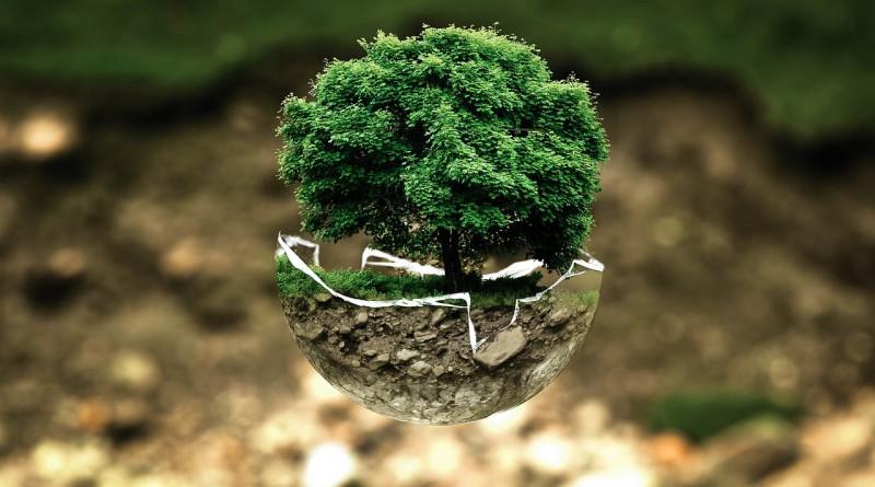 Aziende Ecosostenibili