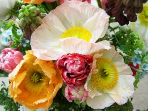 consegna fiori online