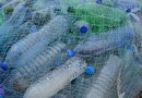 Una ricerca europea per contrastare la plastica
