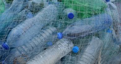plastica e ricerca