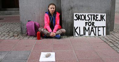 Greta Thunberg ecologia clima Fridays For Future
