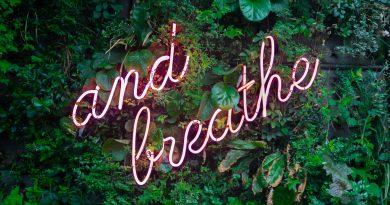 Il purificatore d'aria è davvero utile per la nostra salute?
